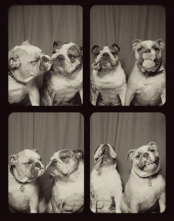 Photo-Booth-Bulldogs
