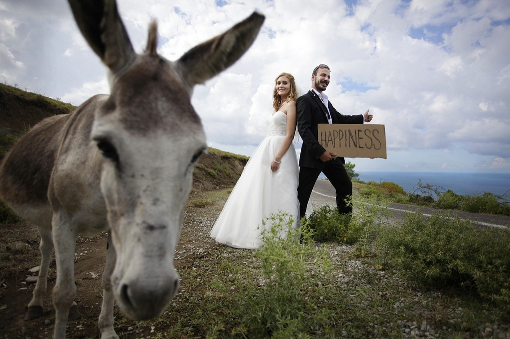 The Bride And The Burro Video