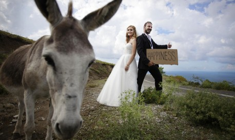 Here Comes the Bride… and Donkey [Friday Fun]
