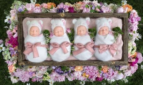 A Rare Identical Quadruplet Newborn Portrait Session, by Noelle Mirabella Photography