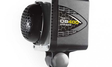 Paul C. Buff DigiBees: Petite Studio Strobes That Won't Sting Your Bottom Line