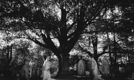 Haunting the Cemetery [Rf Photo of the Day]