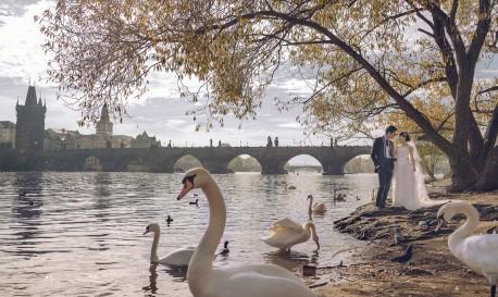An Autumn Fairytale [Rf Photo of the Day]
