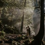 Fairytale Forest [Rf Photo of the Day]